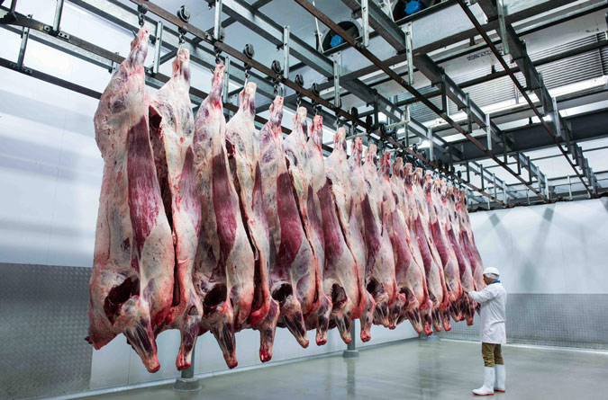 Triple a beef meat processing